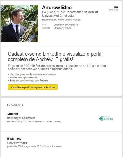 Linkedin Andrew Bleek ex-IT Manager Strawberry