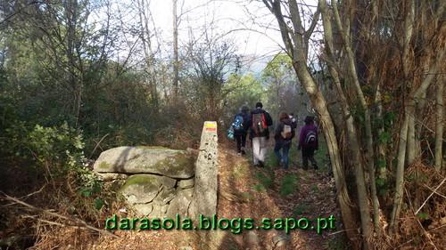 Burgo_12.jpg