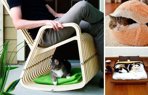 móveis gatos.jpg