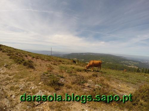 Parideiras_Radar_10.JPG