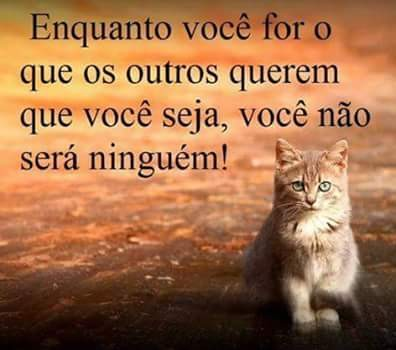 FB_IMG_1453877438191.jpg