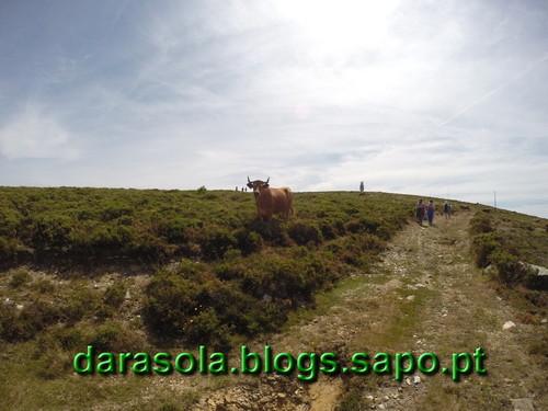 Parideiras_Radar_09.JPG