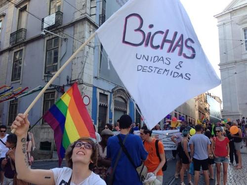 Marcha LGBT Lx 2015.jpg