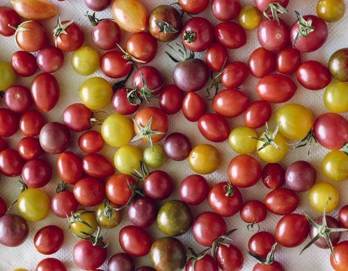 Heirloom-Cherry-Tomatoes.jpg