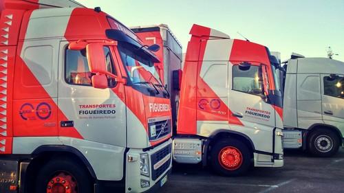 Transportes Alvaro Figueiredo / Camiões