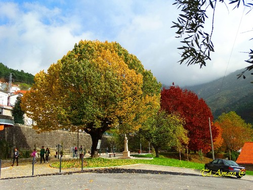 Fotos de Outono !!! 008.jpg