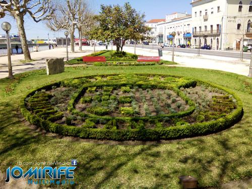Brasão de Coimbra desenhado no jardim [en] Coimbra logo designed the garden