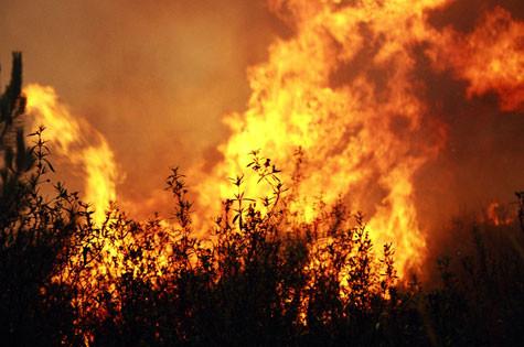 201375720_IncendioFlorestal2013.jpg