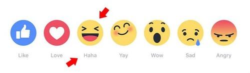 Reações do Facebook | HAHA | Maria das Palavras