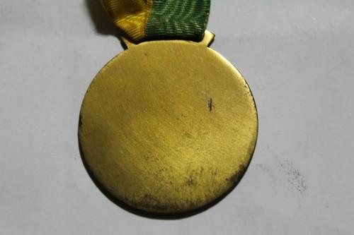 medalha-da-11-convenco-nacional-da-baia-lions-club