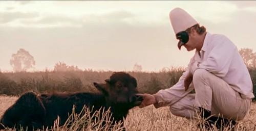 screenshot_locarno_film_bella_perduta1.jpg