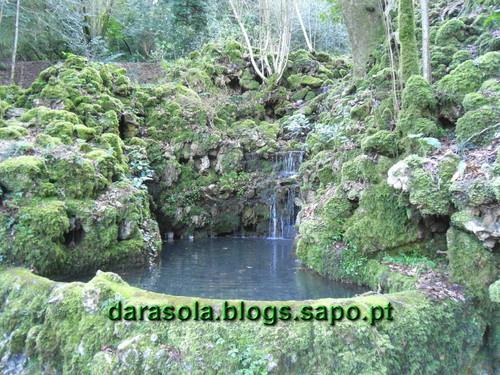 Mata_Bucaco_36.JPG