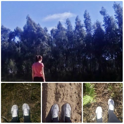 bb dos bosques.jpg