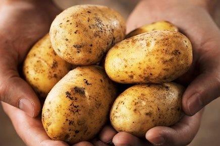 Batatas.jpg