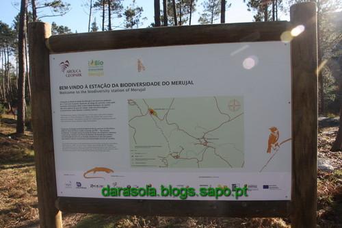 Biodiversidade_Freita_01.JPG