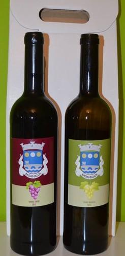 Vinho de Badamalos.jpg