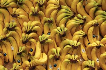 bananas-508e.jpg