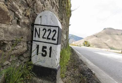 13 N22.jpg