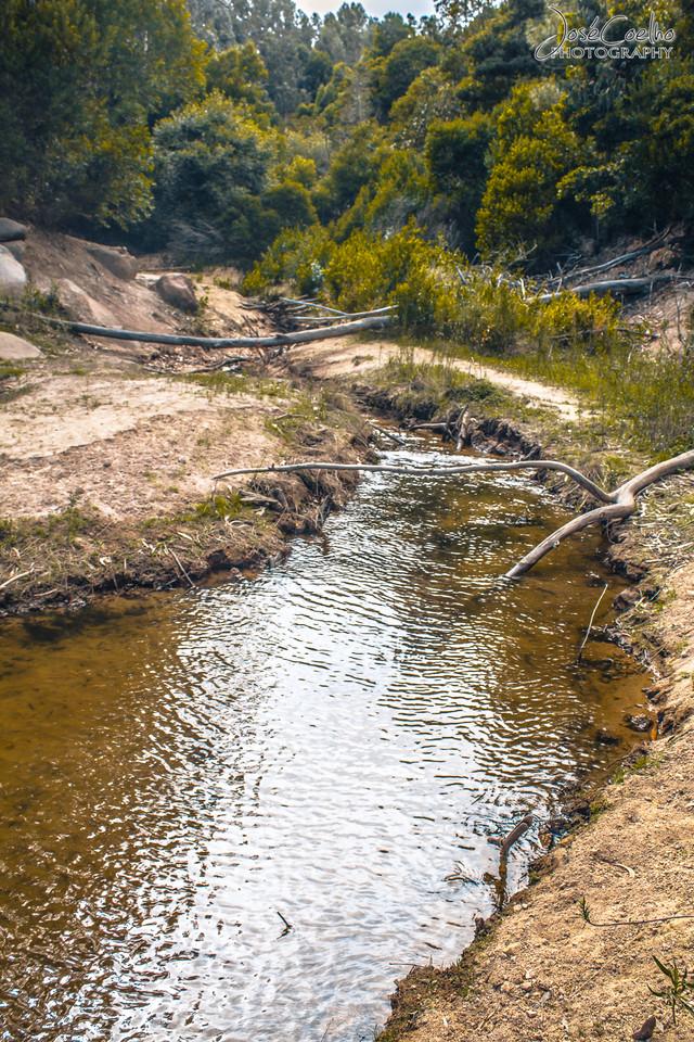 Barragem do Rio da Mula (22).jpg