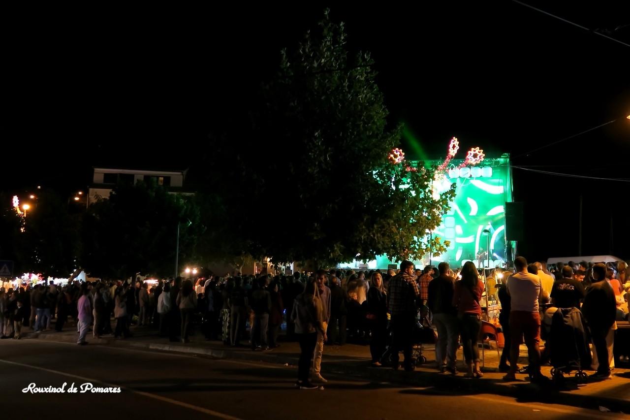 Festas Fiolhoso 2015 (4)