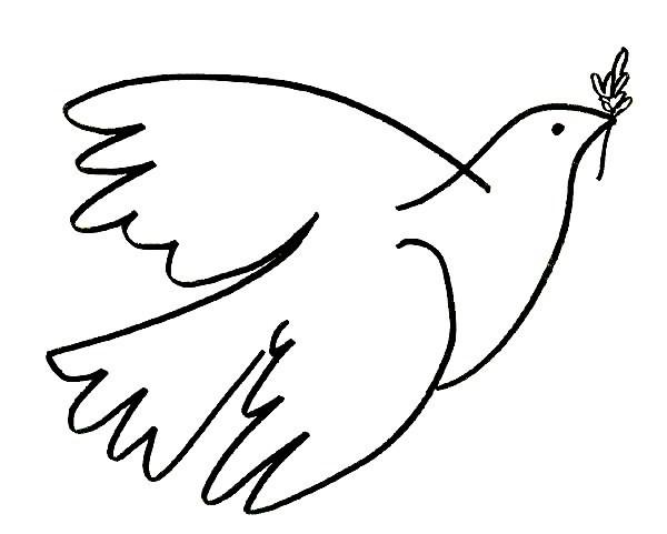 pomba_paz, 2.jpg