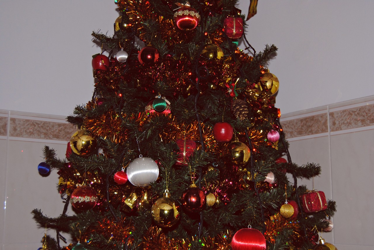 Natal 14.JPG
