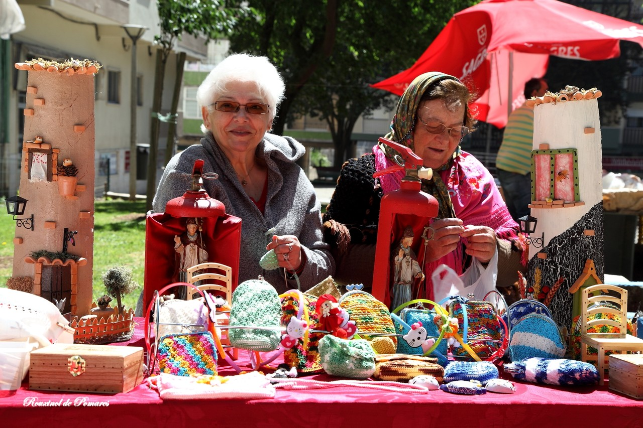 Feira Saloia Agualva Maio 2015 (003)
