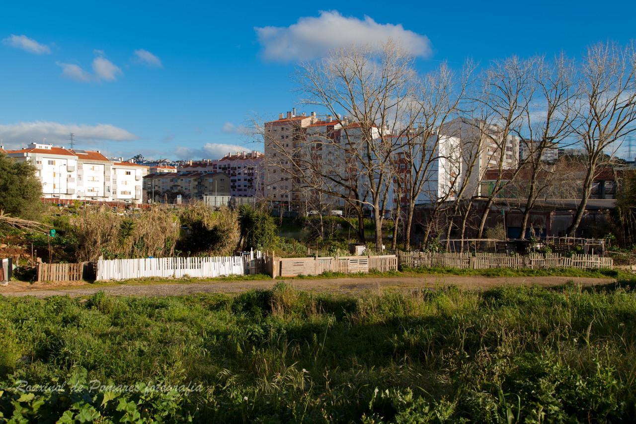 Pela minha cidade de Agualva-Cacém (I) (8)