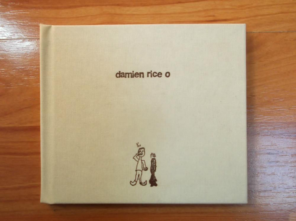 damien rice.jpg