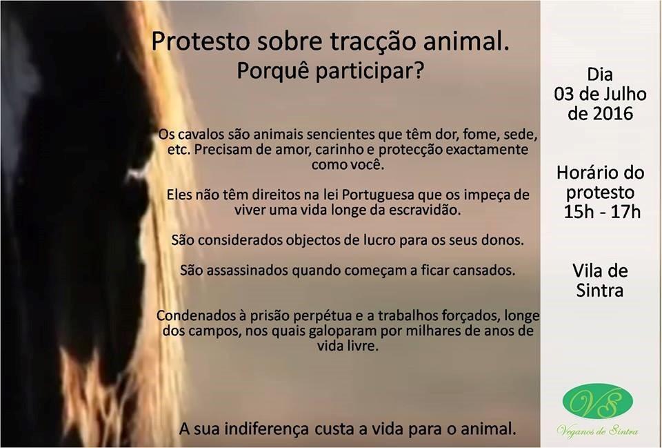 PROTESTO EM SINTRA.jpg