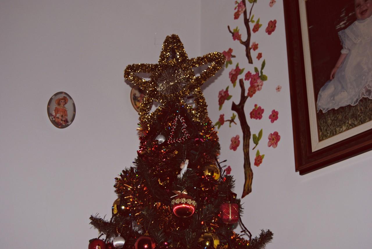 Natal 13