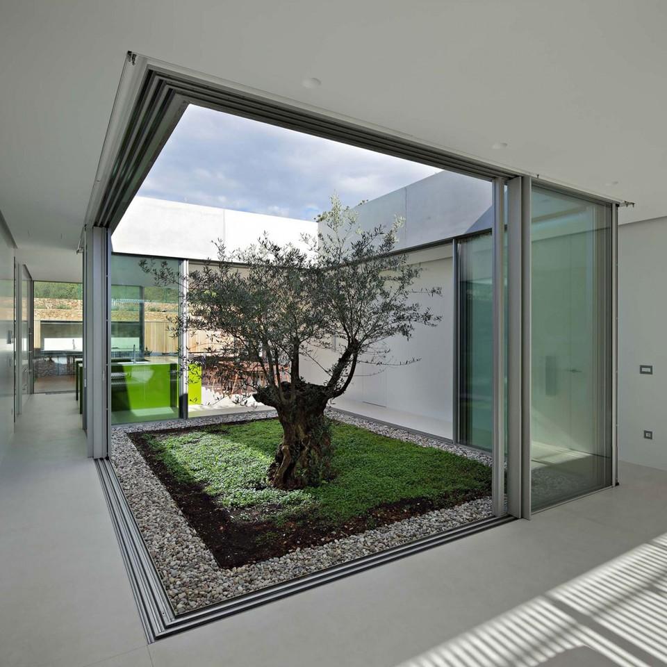 Olive-House-14-1150x1150.jpg