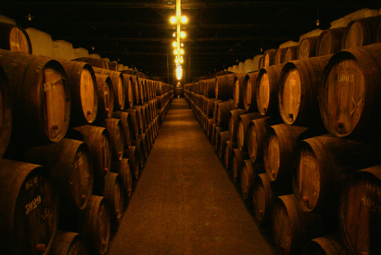 Wine_cellars_of_taylor´s.jpg