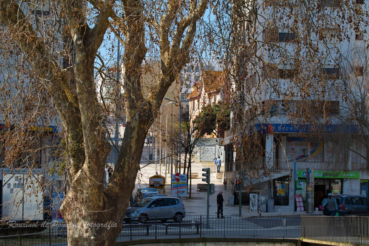 Pela Minha Cidade Agualva-Cacém (13)