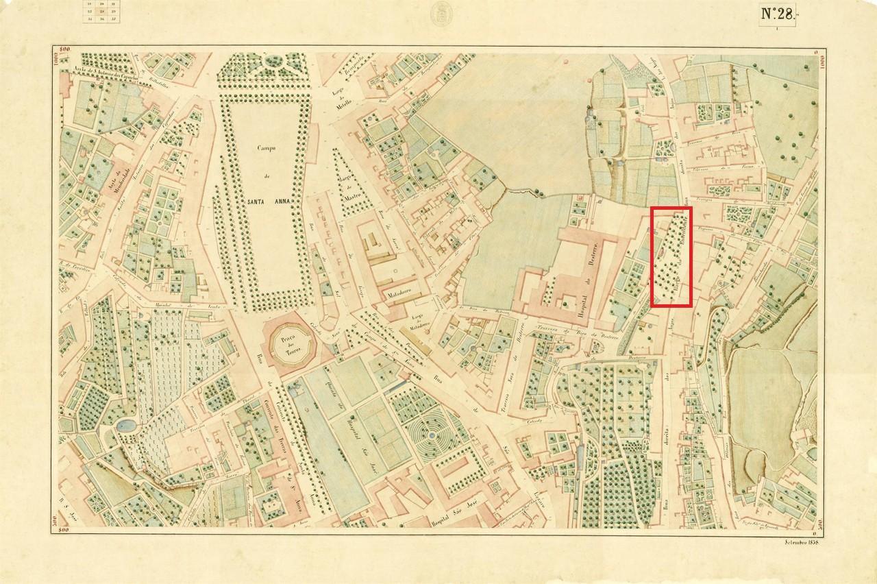 19489148_FGMUQ.jpg