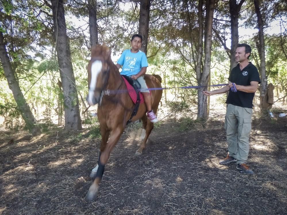 martim cavalo.jpg