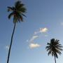 Brasil_- Tibau do Sul _ 1.jpg