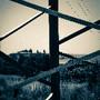 SAM_2661_edited_edited.jpg
