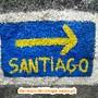 Gaia_Serra_Canelas_Espinho_04