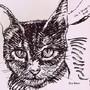 gatos9.JPG