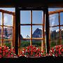 janelas.jpg