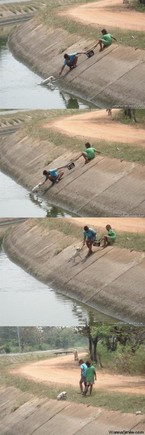 kids-save-dog-from-canal.jpg