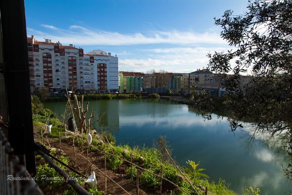 Pela minha cidade de Agualva-Cacém (I) (3)