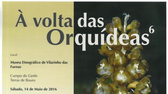 """""""À volta das Orquídeas"""" - Capa"""