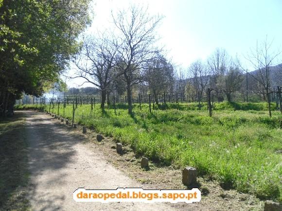 GeoBTT_Ecopista_Ponte_Lima_05