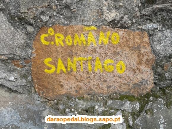 Gaia_Serra_Canelas_Espinho_01