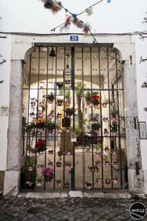 Alfama_Graziela_Costa-1668.jpg