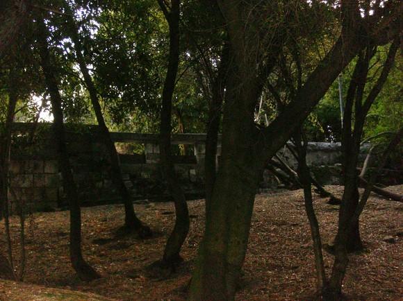 BL-Jardimestrela-RMouro 025