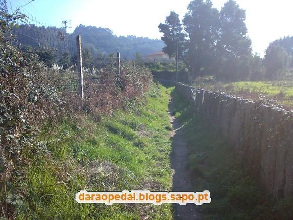 Serra_Canelas_Gaia_04