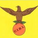 cirl.jpg